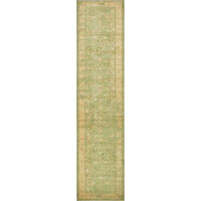 Vikram Light Sage Area Rug Rug Size: Runner 3 x 13