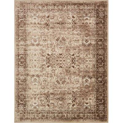 Yareli Brown/Cream Area Rug Rug Size: 13 x 198
