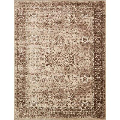 Yareli Brown/Cream Area Rug Rug Size: 10 x 13