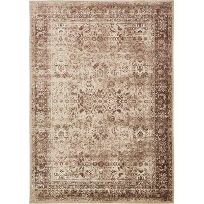 Yareli Brown/Cream Area Rug Rug Size: 8 x 116