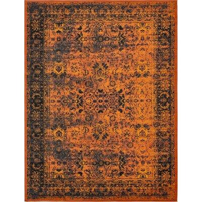 Yareli Terracotta/Black Area Rug Rug Size: 13 x 198