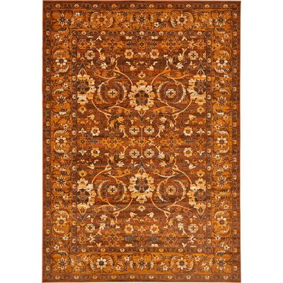 Yareli Orange/Brown Area Rug Rug Size: 8' x 11'6