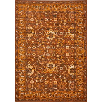 Yareli Orange/Brown Area Rug Rug Size: 7' x 10'