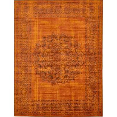 Yareli Terracotta/Brown Area Rug Rug Size: 13 x 198