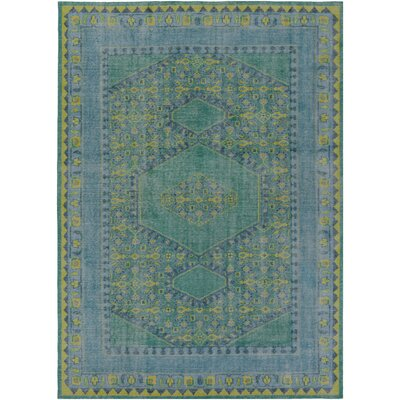 Hagerman Hand-Knotted Teal Area Rug Rug size: Rectangle 8 x 11