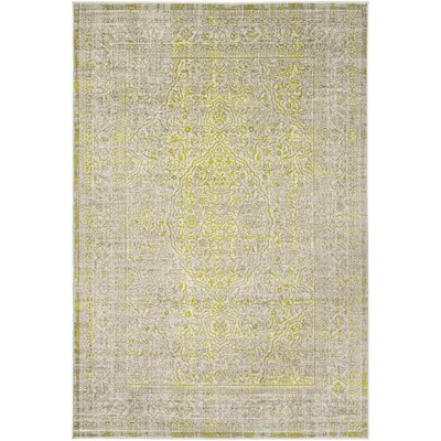 Anil Khaki Area Rug Rug size: Rectangle 52 x 76