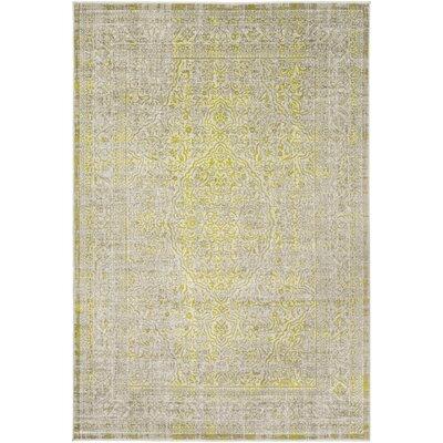 Anil Khaki Area Rug Rug size: 76 x 106