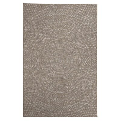 Farley Brown Indoor/Outdoor Area Rug Rug Size: 53 x 76