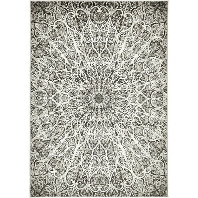 Keswick Dark Gray/Ivory Area Rug Rug Size: Rectangle 6 x 9