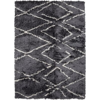 Leona Charcoal Area Rug Rug Size: 5 x 76