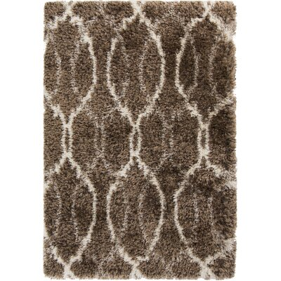 Sina Chocolate Rug Rug Size: Rectangle 2 x 3