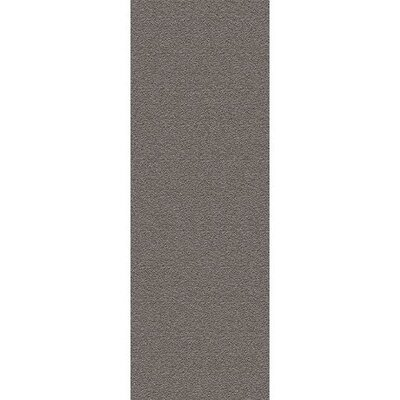 Hauser Charcoal Area Rug Rug Size: Rectangle 2 x 37
