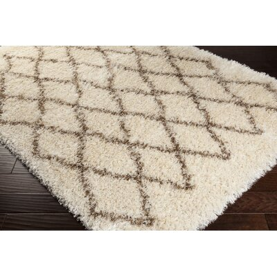 Evelyn Shag Hand-Woven Area Rug Rug Size: Rectangle 2' x 3'