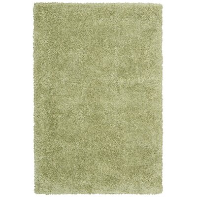 Moindou Green Area Rug Rug Size: Rectangle 5'3