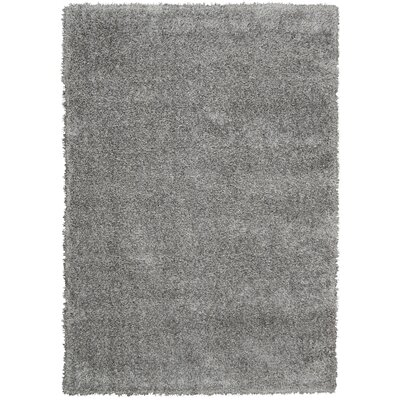 Moindou Gray Area Rug Rug Size: 311 x 511