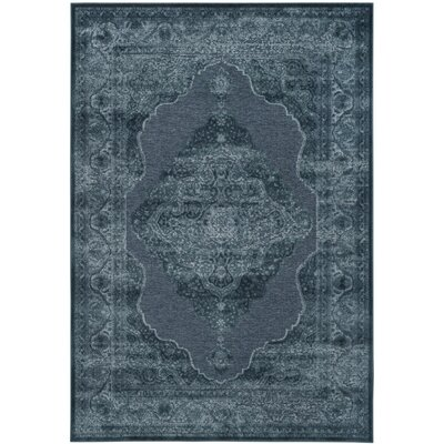 Goshen Blue Area Rug Rug Size: Rectangle 53 x 76