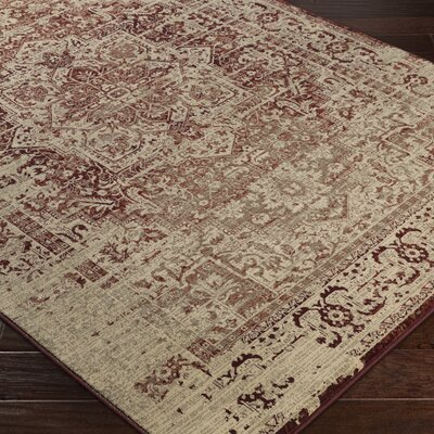 Argentine Red Area Rug Rug Size: Rectangle 53 x 73