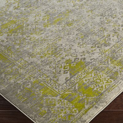 Anil Green/Gray Area Rug Rug Size: 76 x 106