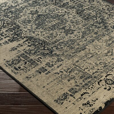 Argentine Back/Beige Area Rug Rug Size: Rectangle 53 x 73