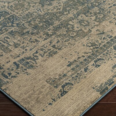 Argentine Blue/Beige Area Rug Rug Size: Rectangle 27 x 47