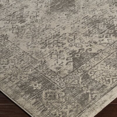 Anil Brown Area Rug Rug Size: 52 x 76