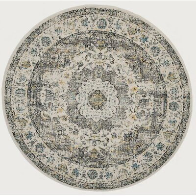 Ameesha Gray/Gold Area Rug Rug Size: Square 9