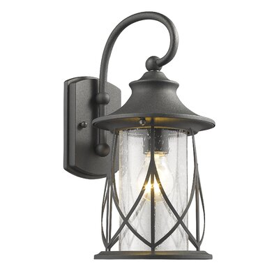 Pembroke 1-Light Outdoor Wall Lantern Finish: Black