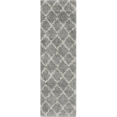 Arora Dark Gray Area Rug Rug Size: Runner 23 x 76
