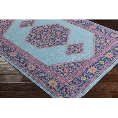 Randhir Pink/Blue Area Rug