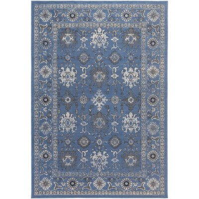 Denmark Blue/Gray Area Rug Rug Size: Rectangle 54 x 78