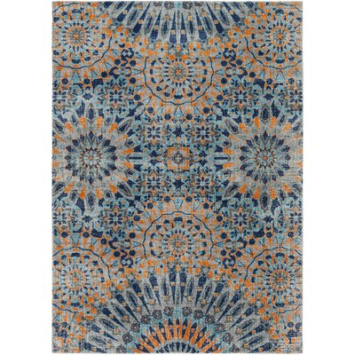 Randhir Blue/Orange Area Rug Rug Size: 53 x 73