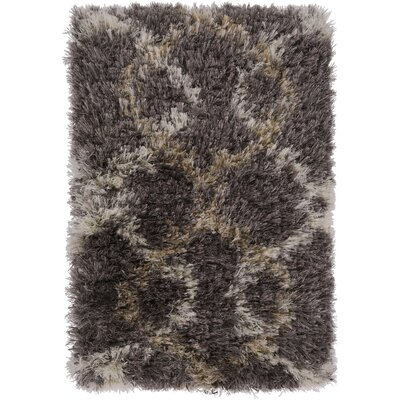 Sina Gray Rug Rug Size: Rectangle 5 x 8