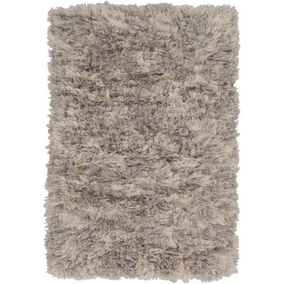 Sina Gray Area Rug Rug Size: Rectangle 2' x 3'
