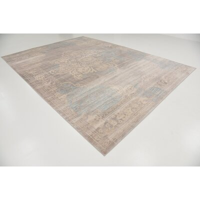 Pellham Gray Area Rug Rug Size: Rectangle 9 x 12