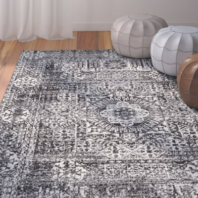 Coyne Black Area Rug Rug Size: Rectangle 4 x 6