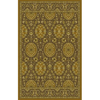 Monnickendam Tufted Olive Area Rug Rug Size: Rectangle 8 x 11