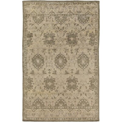 Sarai Beige Area Rug Rug Size: Rectangle 2 x 3