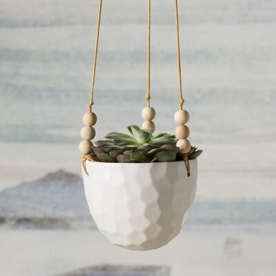Floreana Ceramic Hanging Planter