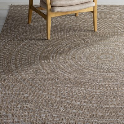 Dora Gray/Brown Indoor/Outdoor Area Rug Rug Size: 51 x 76
