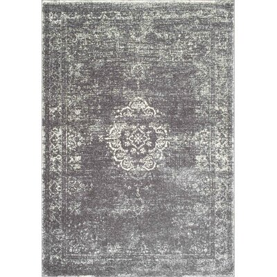 Burdge Gray Area Rug Rug Size: Rectangle 5 x 75
