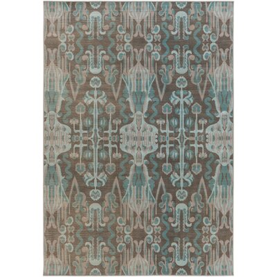 Hasselt Teal/Brown Area Rug Rug Size: Rectangle 2'8