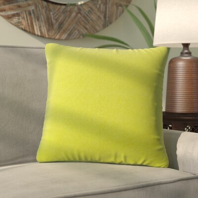 Alla Outdoor Throw Pillow Color: Kiwi