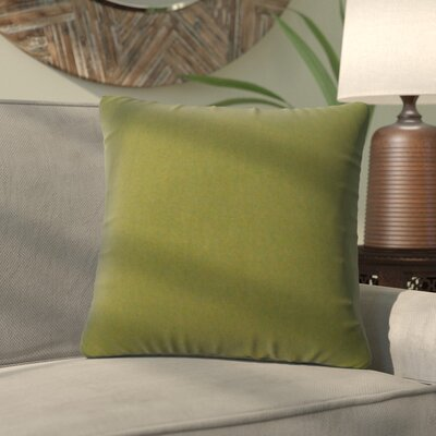 Alla Outdoor Throw Pillow Color: Summerside Green