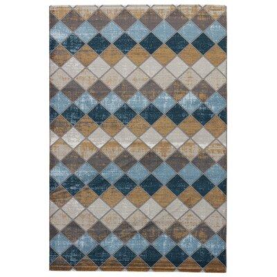 Terrance Cobblestone Area Rug Rug Size: 2 x 3