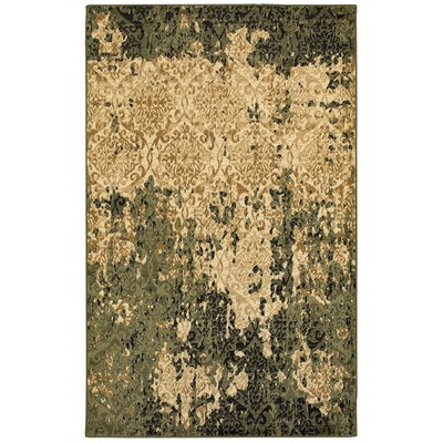 Fayme Green/Tan Area Rug Rug Size: 52 x 72