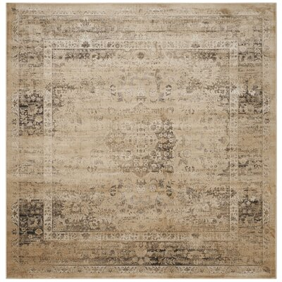 Vishnu Beige/Brown Area Rug Rug Size: Square 8
