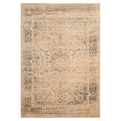 Todd Beige/Brown Area Rug Rug Size: Rectangle 27 x 4