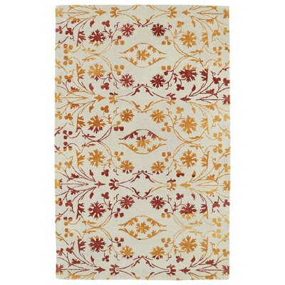 Paita Beige Area Rug Rug Size: Rectangle 36 x 56