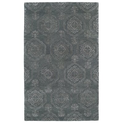 Paita Gray Area Rug Rug Size: 36 x 56