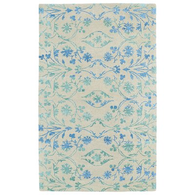 Paita Ice Area Rug Rug Size: Rectangle 96 x 13